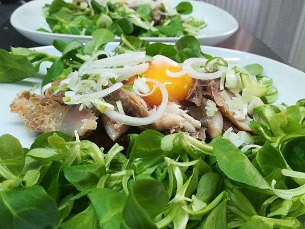 Makrel på bund af salat